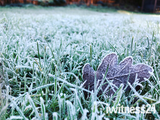Project 52- Winter Mornings