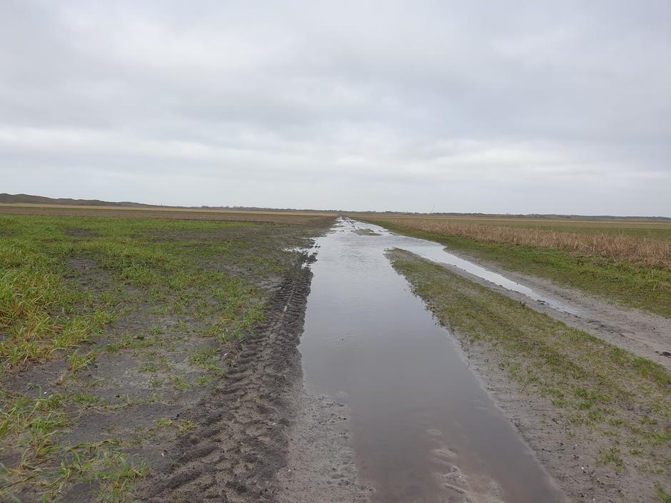 Kletsnatte landerijen op Texel