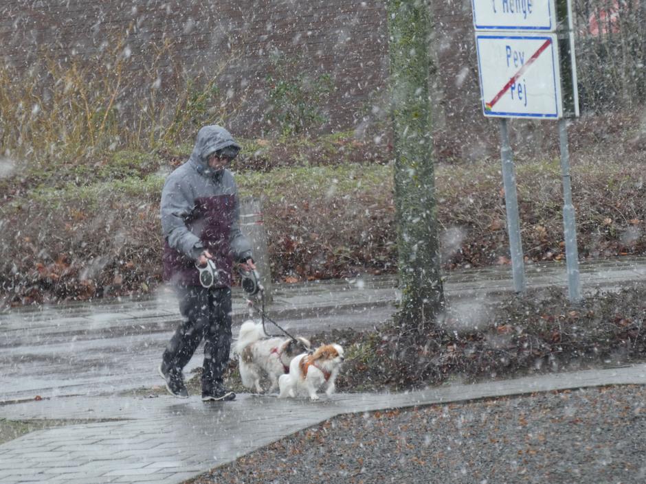 Het sneeuwt in Pey.