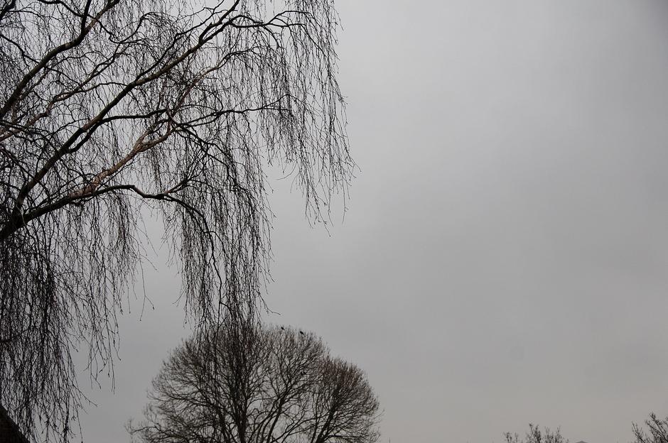 Grijze sneeuwlucht.