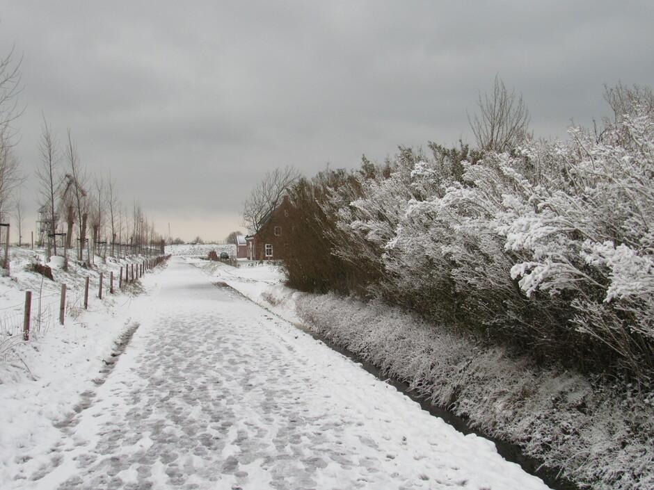 Mooie plaatjes in de sneeuw