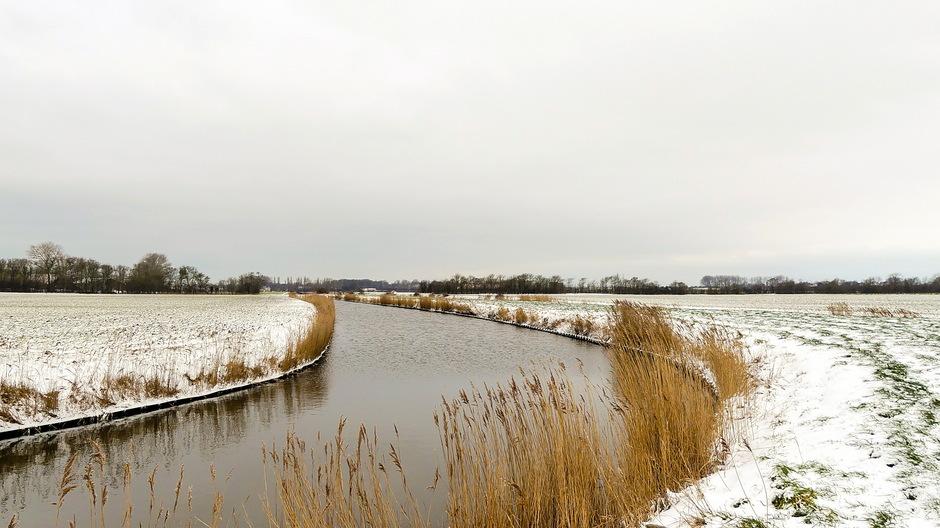 Grijze sneeuwlucht / Winterlandschap