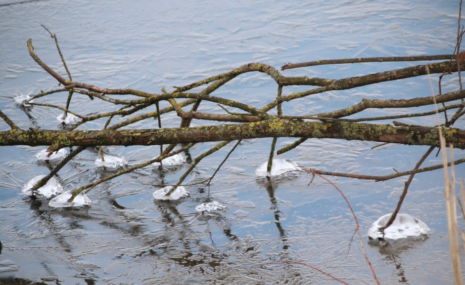 Ijsvorming op het water