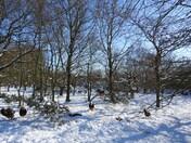 Hempton snow