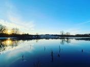 Bowthorpe marshes