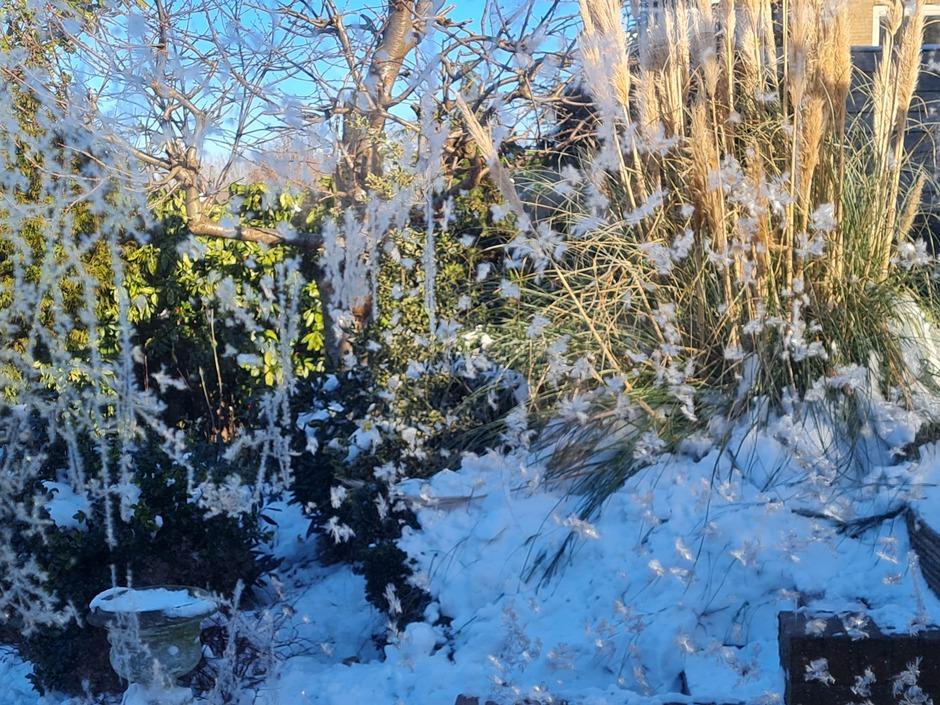 Zon, ijs, sneeuw,  knalblauwe lucht.