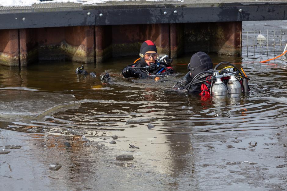 IJsduiken in de Nieuwe Rijn in Leiden.