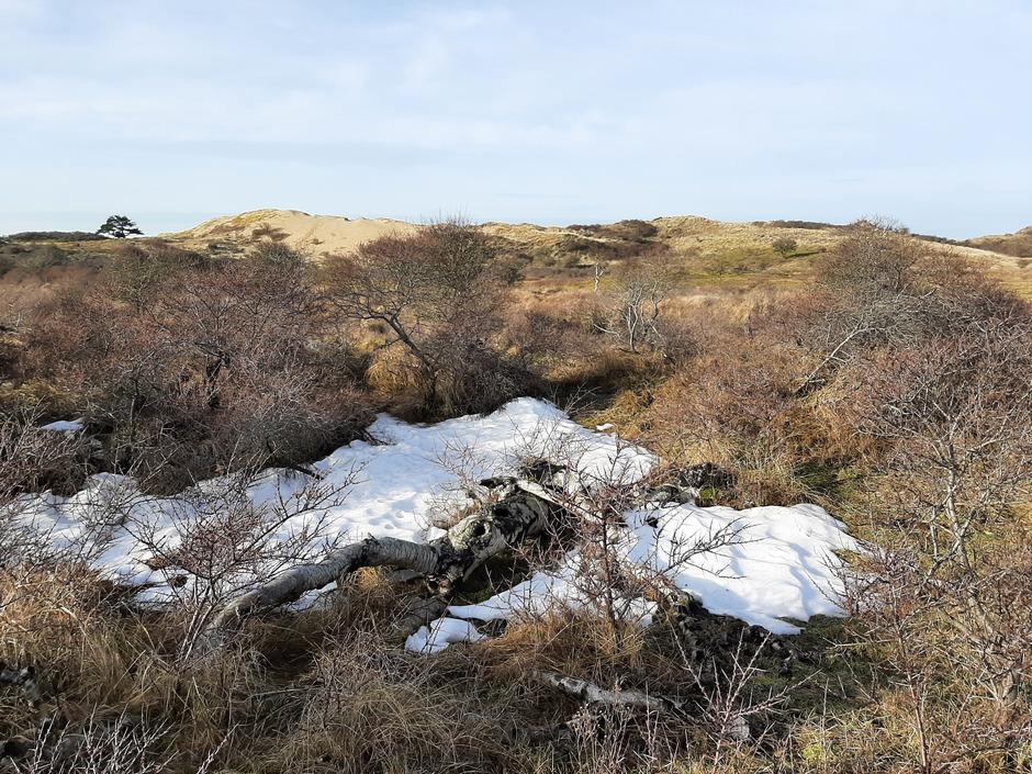 Laatste restjes sneeuw