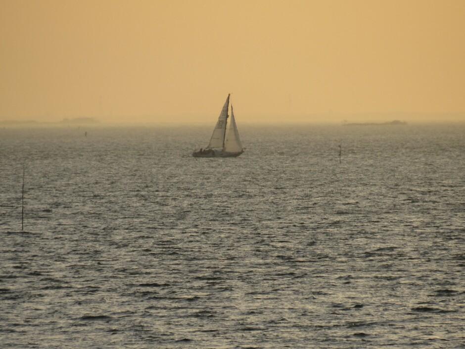Vanmorgen vroeg tijdens zonsopkomst, het was toen rond 8.15 uur, zag ik al een zeilboot op de Oosterschelde, in de verte, brrrr koud hoor