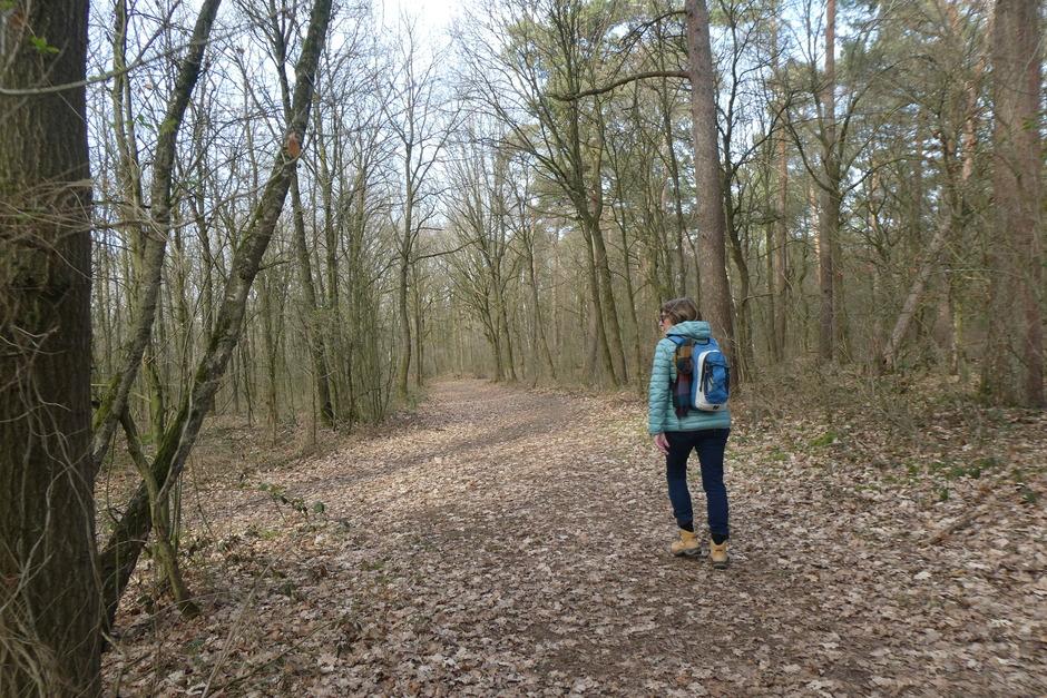 Rustige wandelplek
