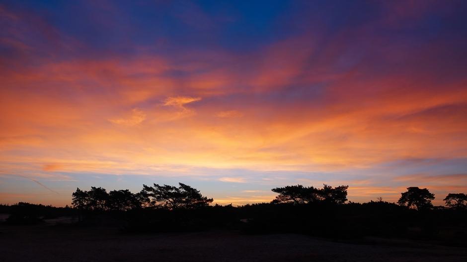 Prachtige kleuren vlak voor zonsopkomst