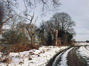 Old martlesham in the snow
