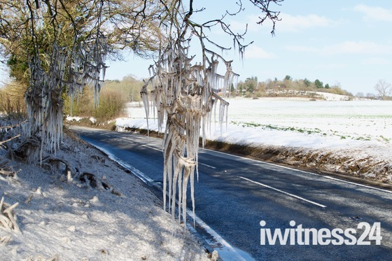Kersey winter pics - Icicles and snowdrops