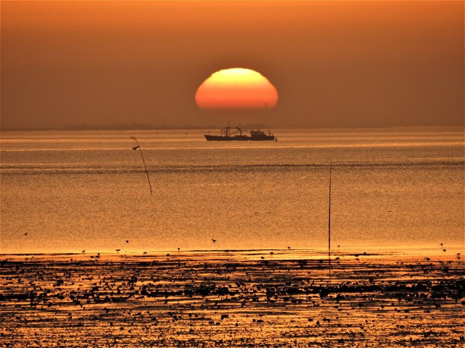 Oranje zonsopkomst vanmorgen, genieten, wat een mooi begin van de lentedag!