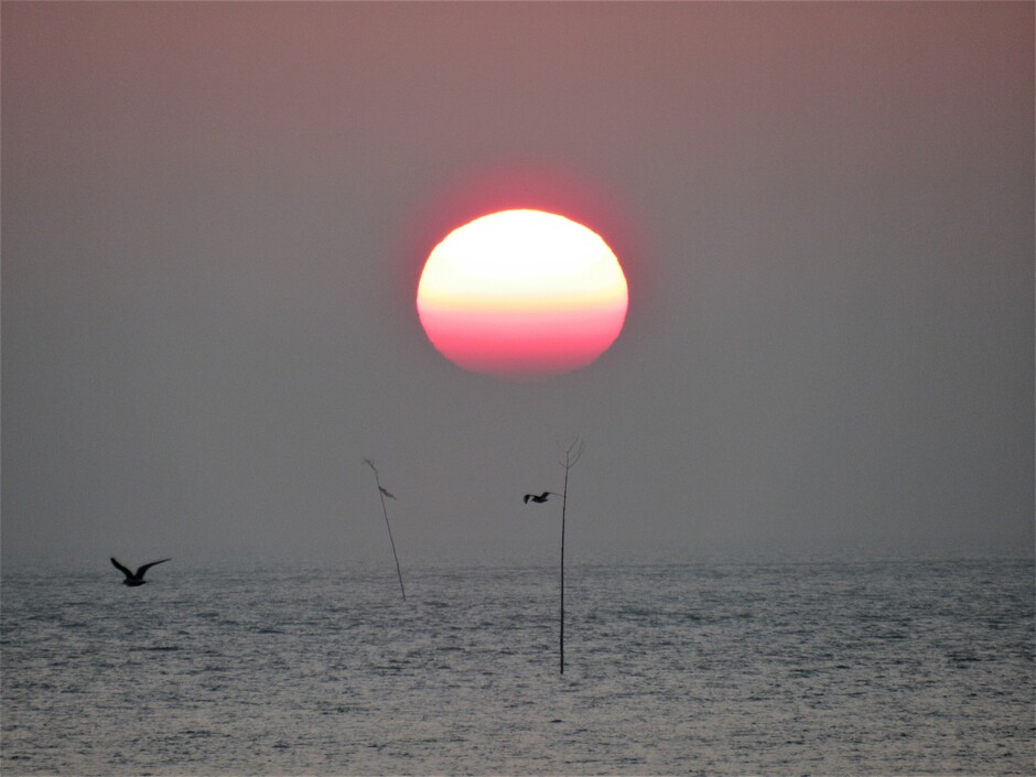 Felrode zonsopkomst, het lijkt wel een zwart/wit foto met een kleurenbal