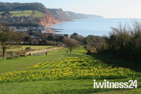 Golden symbol of hope for Sidmouth