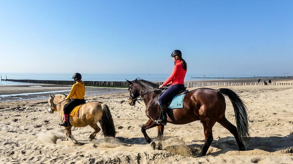 Stralende dag voor paardenritje