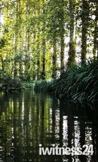 Kayaking Norfolks Rivers