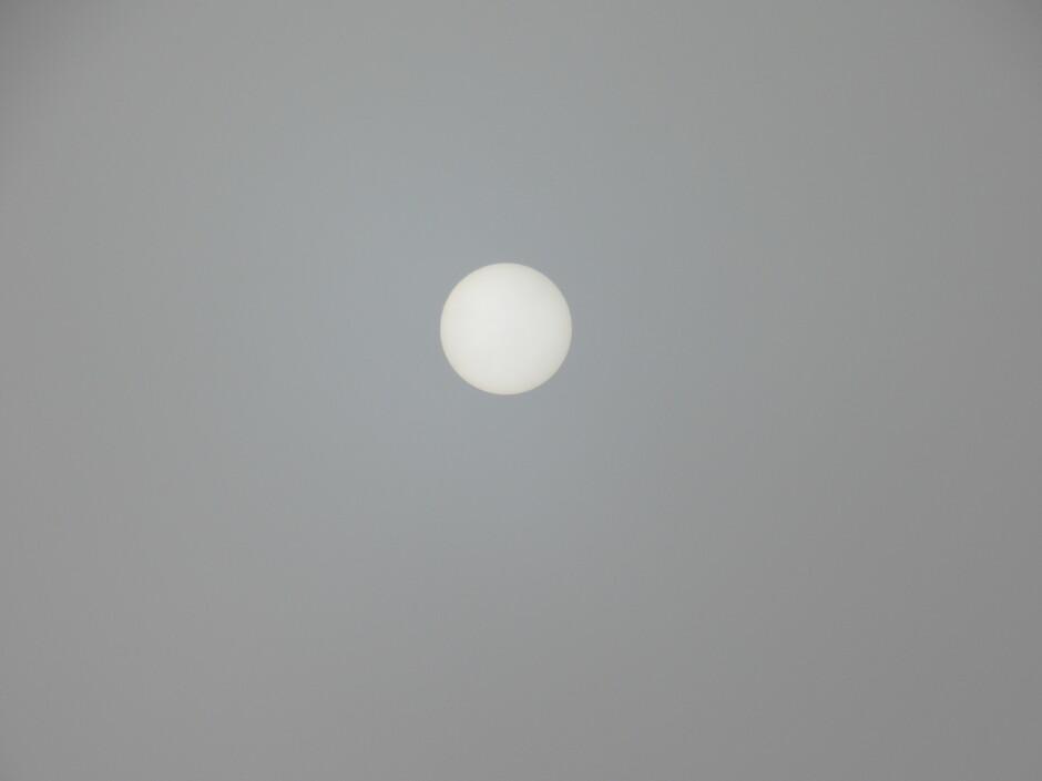 De zon liet zich even zien in de mist