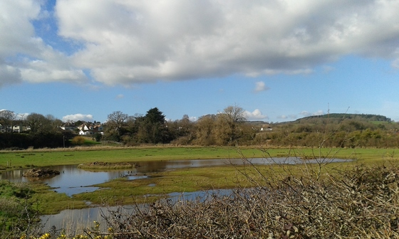 Views from the River Otter towards Budleigh Salterton