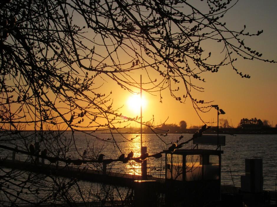Mooie zonsopkomst aan het Veerse Meer in Kortgene bij de jachthaven, 2 graden, Brrrr