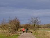 Felixstowe to Trimley nature reserve bike