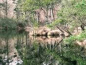 Bystock ponds