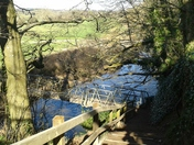 The River Otter on a lovely February morning