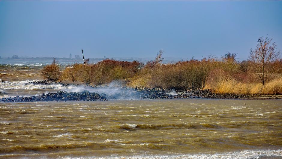 Veel wind op het Haringvliet