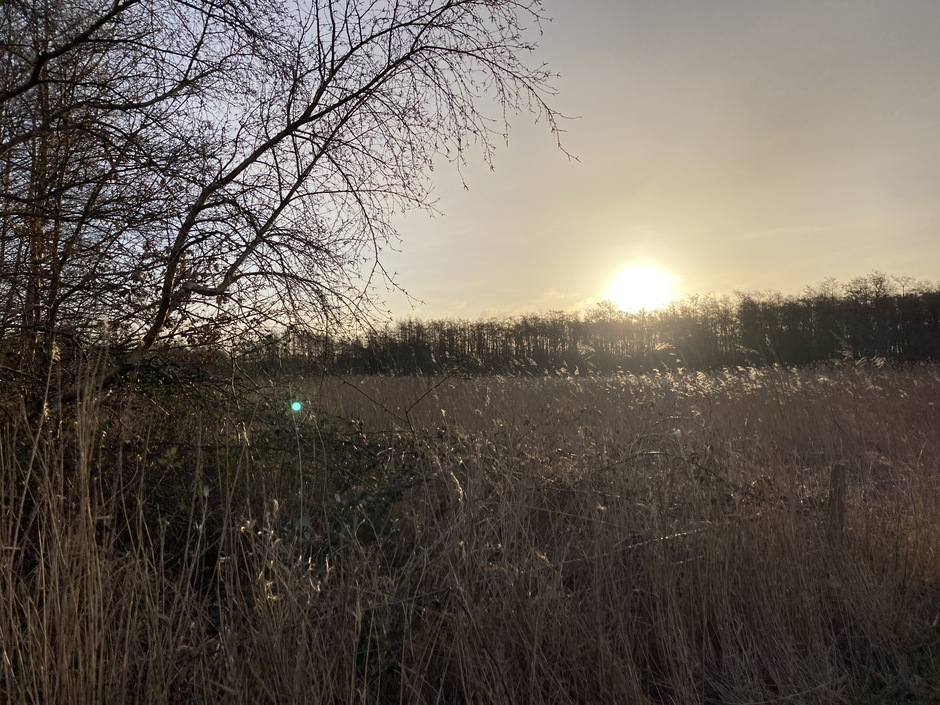 Een zonnig begin van de dag