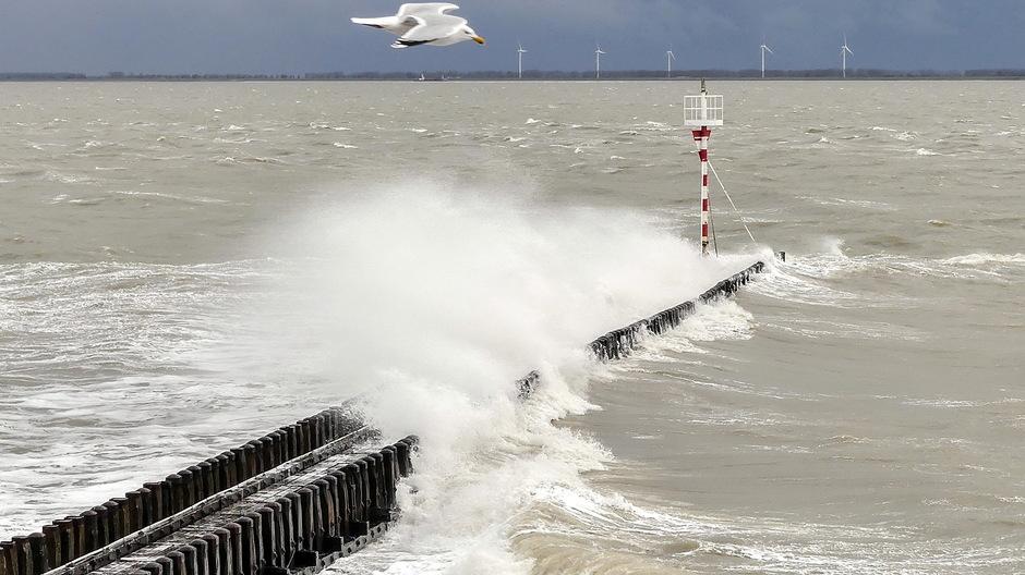 Stormachtige wind onstuimige golven