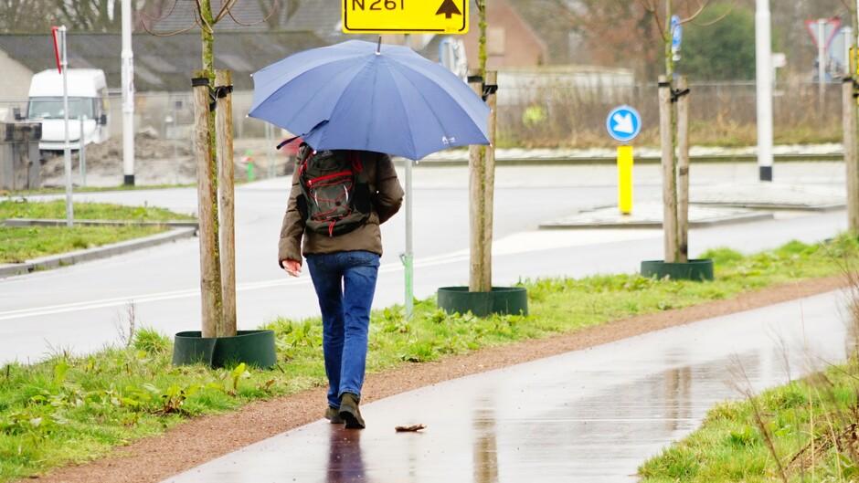 Parapluweer