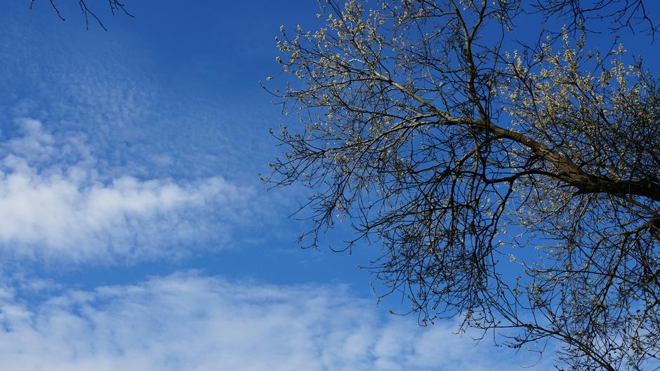 Vriendelijke wolken