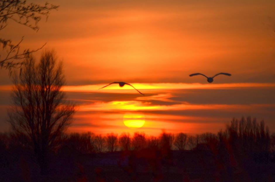 De Zonsondergang op Maandag!