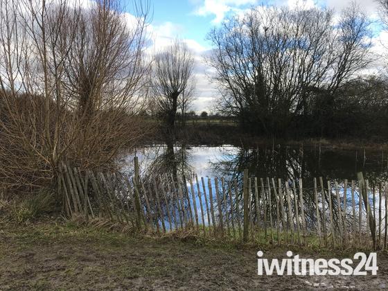 stotfold mill stream & norton lane pond