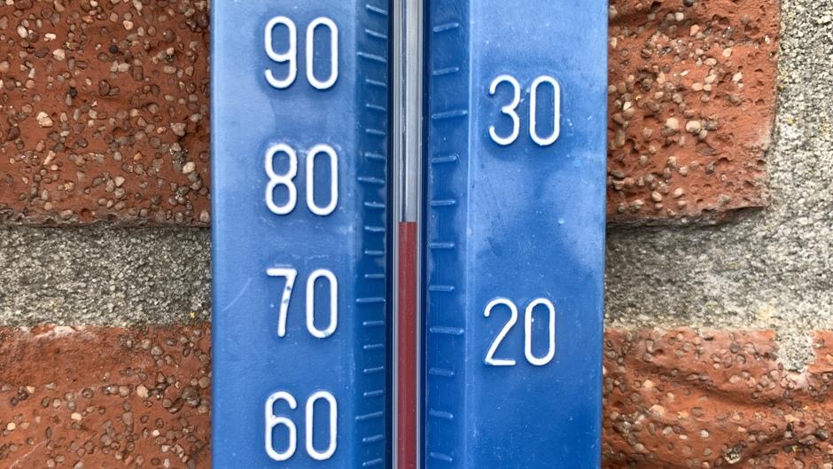 25 graden eind maart achter het huis.