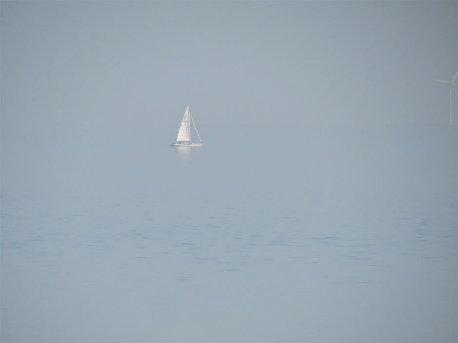 Vanmiddag zo diesig bij de Zeelandbrug dat je geen verschil zag tussen water en lucht, dezelfde kleur, het verschil maakte het zeilbootje, echt zo'n mooi gezicht was het