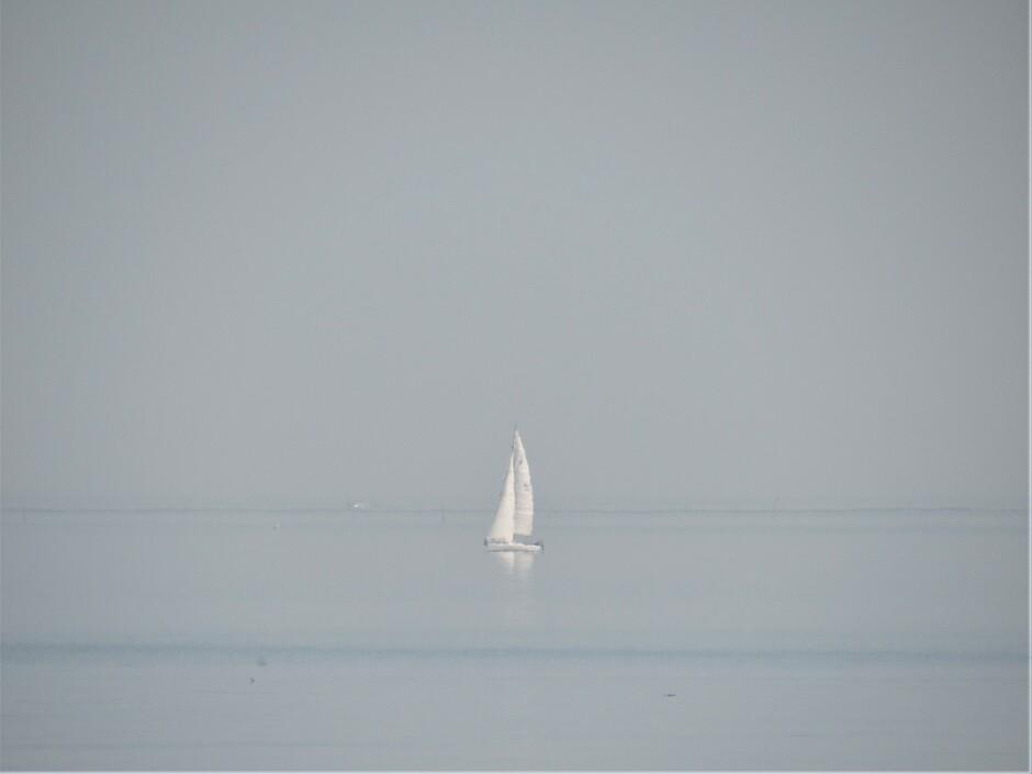De kleur van de Oosterschelde en de lucht waren nauwelijks van elkaar te onderscheiden en ertussen zag ik een zeilbootje, echt een mooie gewaarwording en het zonnetje scheen, heerlijk weer bij Colijns
