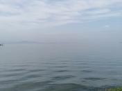 Misty calmness