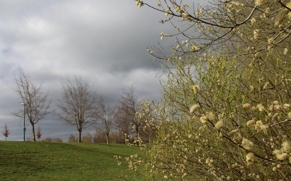 Weersomslag met donkere lucht en koude wind.