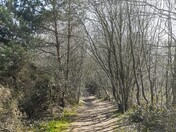 Views around Squabmoor Reservoir