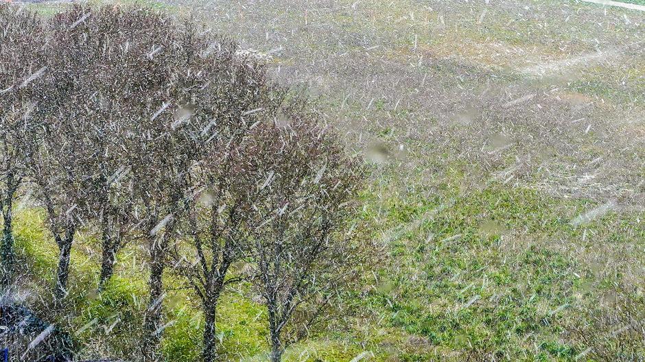Hagel en nattesneeuwbui