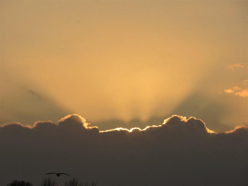 Zonsondergang gisteravond, de zon verdween achter de wolken maar liet z'n stralen nog zien