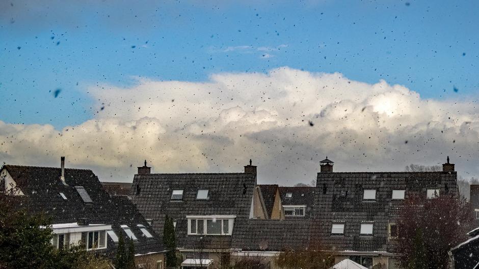 Flinke sneeuwbuien