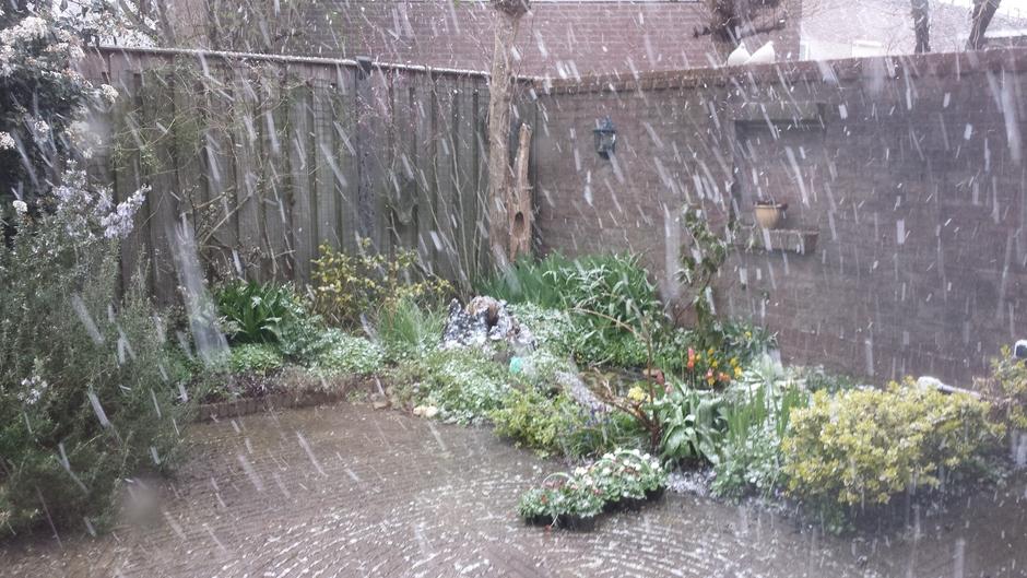 Het sneeuwt.