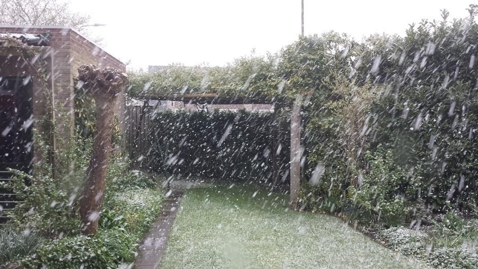 Sneeuwvlokken dwarrelen naar beneden.
