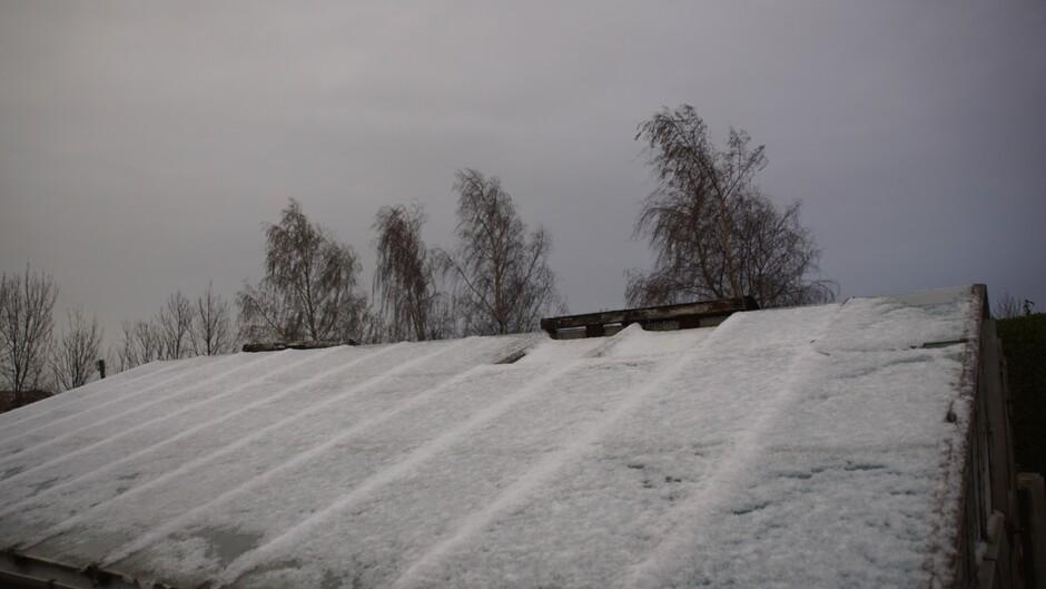 grijs en bewolkt 2 gr nog wat sneeuw op het dak v/d druivenkast