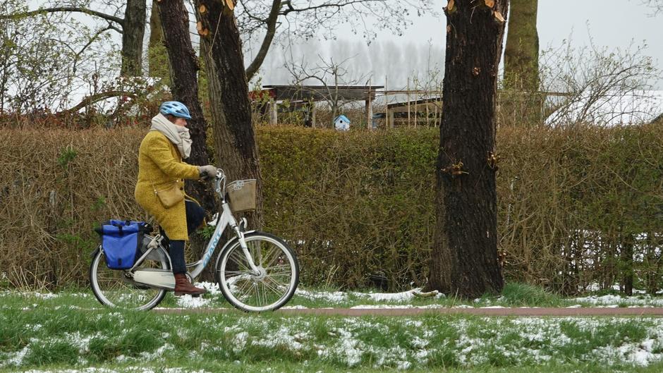 Vanmorgen koud op fiets.