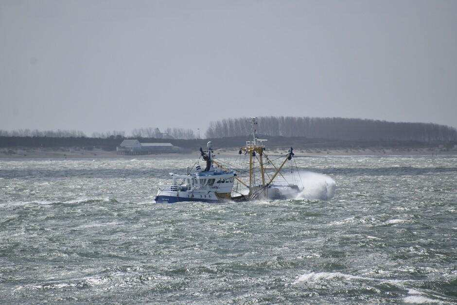 Viskotter op zee