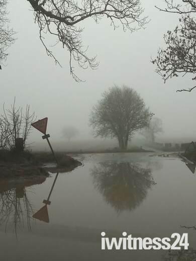 Recent flood damage reflection